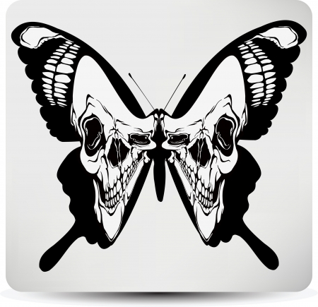 skull vector: Butterfly skull. Vector illustration. Illustration