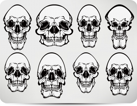 Set of skulls. Vector illustration. Stock Vector - 14309152