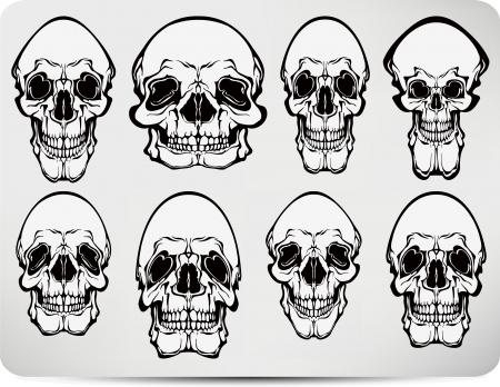 Set of skulls. Vector illustration. Vector