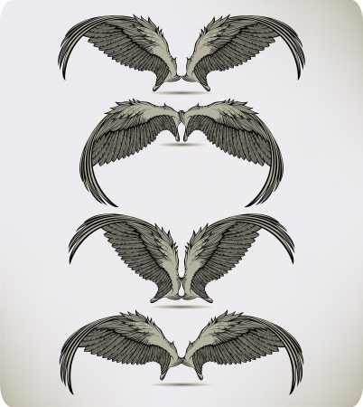 Wings of the Griffon, set Stock Vector - 14352244