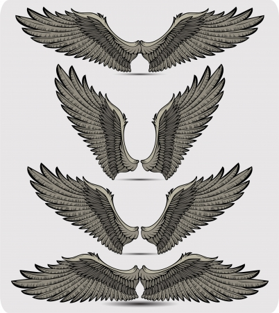 Wings set Stock Vector - 14352247