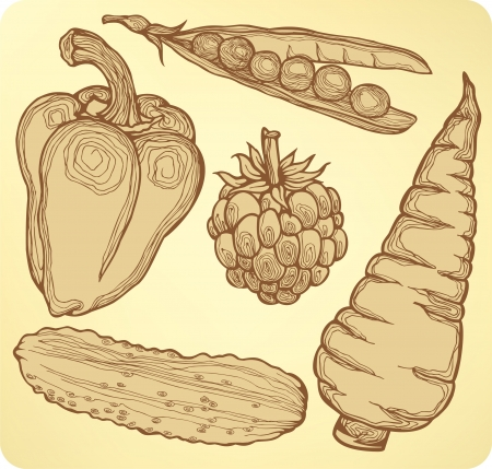 Set vegetables, fruits and berries, hand-drawing.  Vector