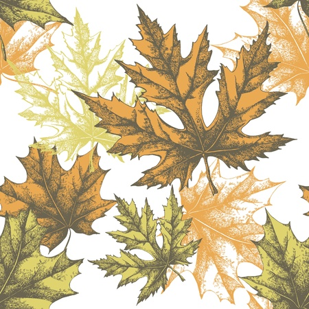 Seamless wallpaper with a maple leaf Vector