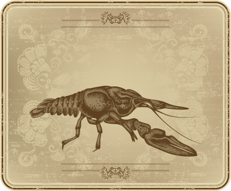 Menu with vintage frame and crayfish, hand drawing Vector