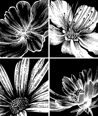 flower of live: Collection of floral backgrounds, hand drawing. Vector illustration.