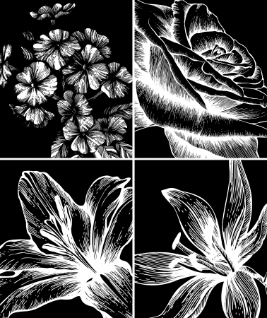 Set of backgrounds with decorative flowers, hand-drawing. Vector. Vector