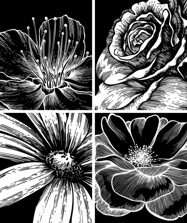 etchings: Set of backgrounds with flowers, hand-drawing. Vector Illustration.
