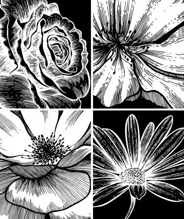 flower of live: Set of floral backgrounds; hand drawing. Vector illustration.