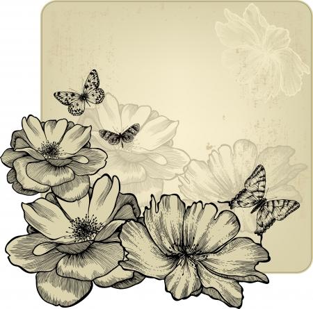 dibujo vintage: Marco de la vendimia con las rosas y las mariposas glamoroso, dibujo a mano ilustraci�n vectorial