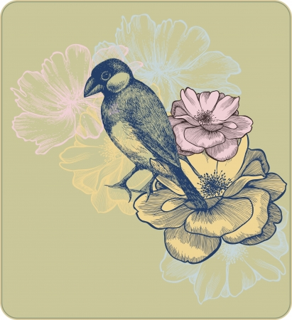 illustration of birds and blooming roses Vector