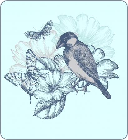 Vector illustration of a bird, blooming roses and butterflies. Vector