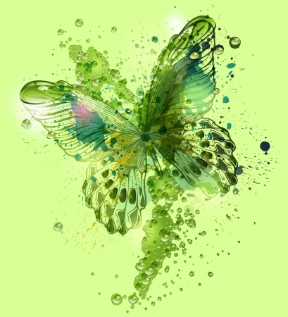 Butterfly with water droplets. Vector illustration. Vector