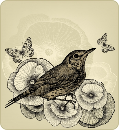 Background with poppy flowers and bird fieldfare, hand-drawing. Vector illustration.