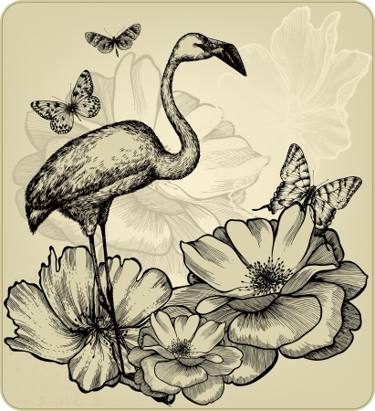 flamingos: Vintage background with blooming roses, bird flamingos and butterflies. Vector illustration.