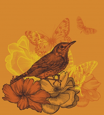 blackbird: Floral background with a bird blackbird, blooming roses and butterflies. Vector illustration.