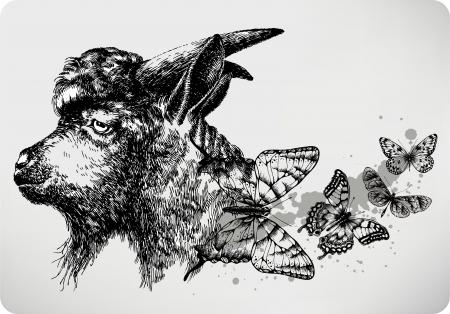 capra: Black goat with butterflies