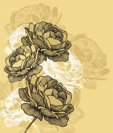 Floral background with blooming roses, hand-drawing. Vector illustration Vector