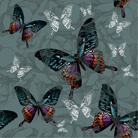 cartoon mariposa: De fondo sin fisuras con flores y mariposas de colores, dibujo a mano. Ilustraci�n del vector.