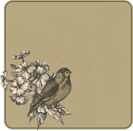 Vintage background with flowers and birds, hand-drawing.