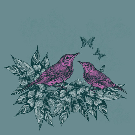 Spring background with two pink birds and butterflies, hand-drawing. Vector illustration.