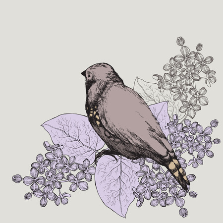 Spring background with bird and a lilac, hand-drawing. Vector illustration.