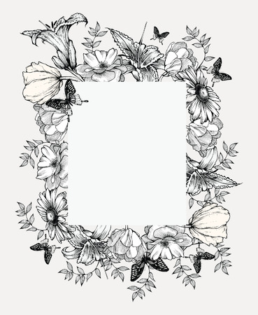 chamomile flower: Black and white vector illustration. Vintage frame with flowers and butterflies.
