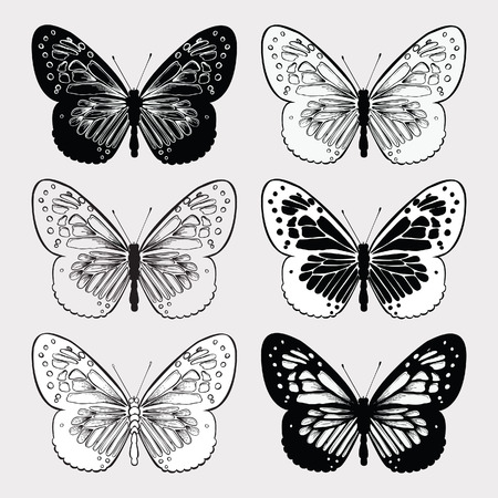 Set of butterflies black and white, hand-drawing. Vector illustration.