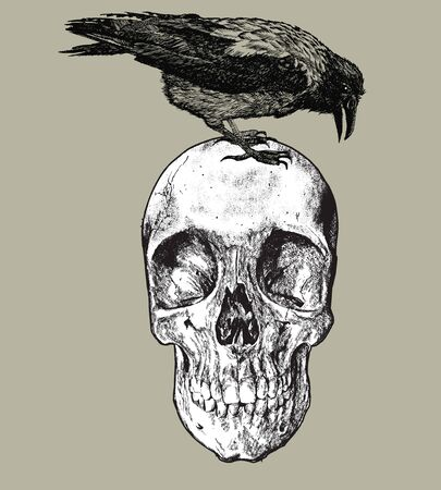 Raven on the skull, hand drawing. Vector illustration Banque d'images - 125670716