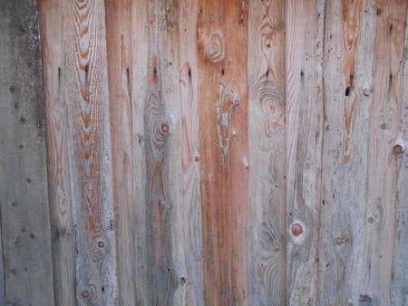 nailed: board, fence, plank nailed