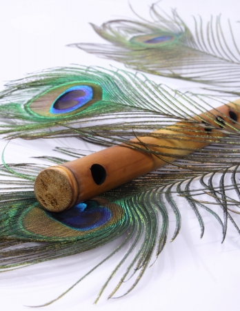 Peacock Feather with Indian Flute