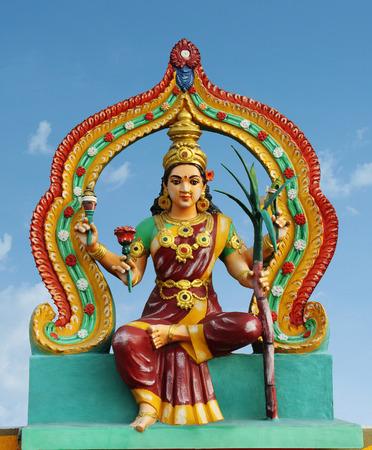 shakti: Hindu Goddess Amman