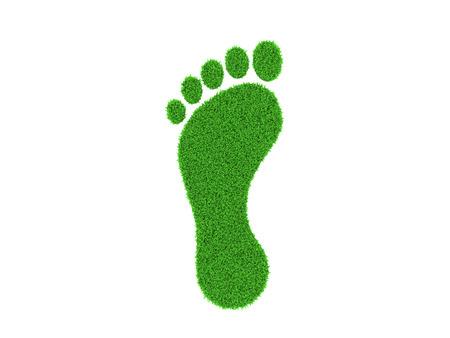 right path: Grass Footprint