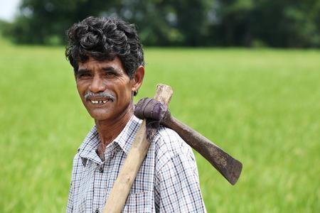 ploughing: Indian Senior Man Holding Grub Hoe Stock Photo