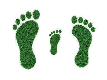 ecosistema: La impresión del pie - 3D imagen