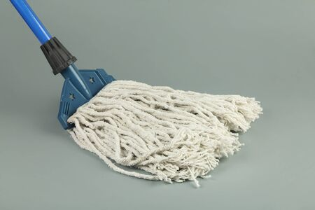 Closeup of Mop on the Gray Background 写真素材 - 129562508