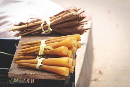 Indian Traditional Food Palmyra sprout or Panang kizhangu Reklamní fotografie