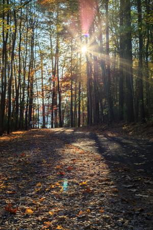 carolina: Walking path in Lake johnson park of Raleigh, NC