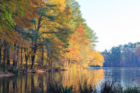Lake Johnson in Raleigh, NC during fall season
