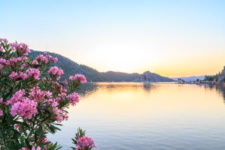 Kizkumu beach avec oleander tree pendant le coucher du soleil à Marmaris, Turquie Banque d'images - 84485097