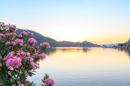 Kizkumu beach with oleander tree during sunset in Marmaris, Turkey