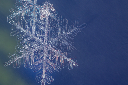Single snow flake on colorful background