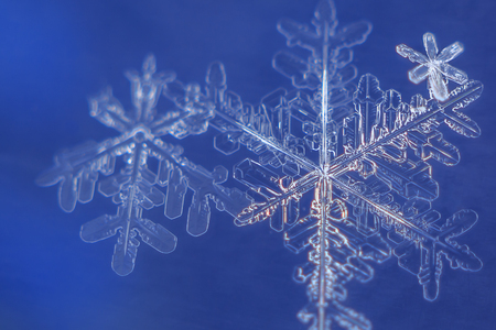 snow flakes on blue background