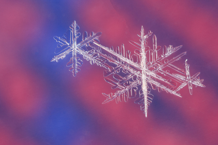 Snow flakes on colorful background