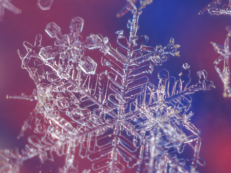 Close-up image of single snow flake on colorful background
