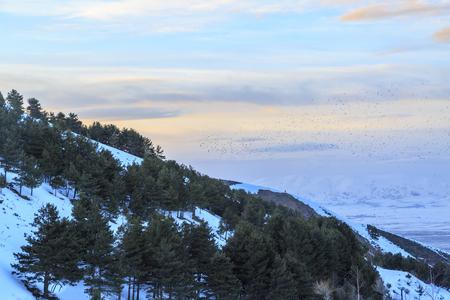 Sunset from palandoken mountain in Erzurum, Turkey