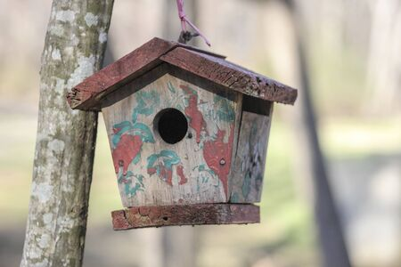 Small wooden bird house in nature