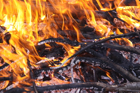 blazing fire burning embers photo