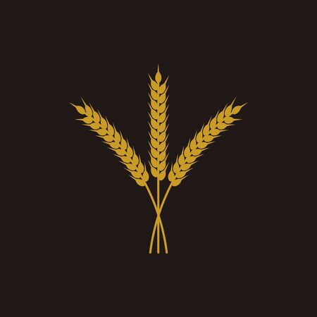 Organic barley spike vector illustration