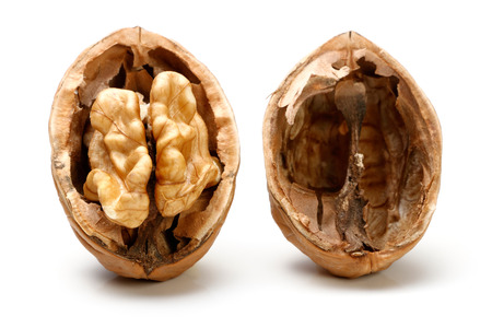 Half a piece of walnut. isolated on a white background