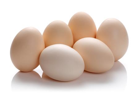 Fresh Dairy Food Isolated on White background